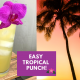 easy tropical punch
